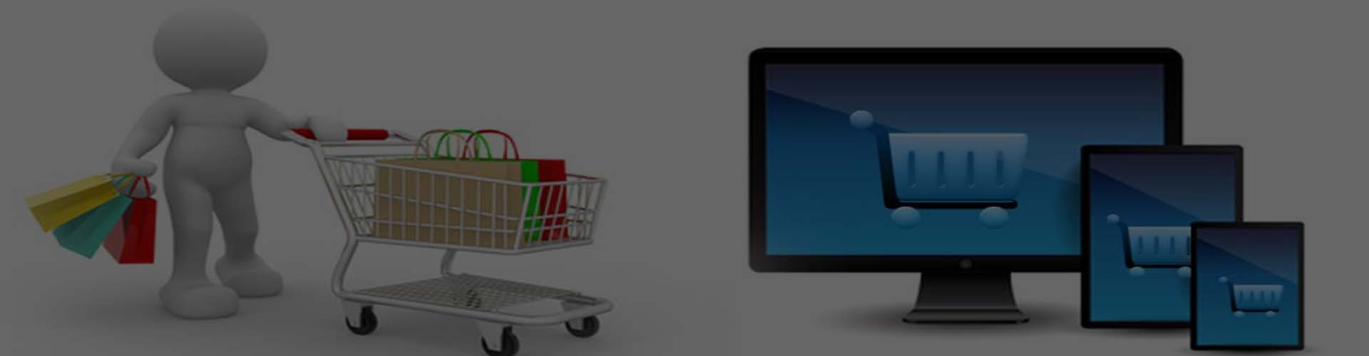 e commerce solution company in chennai